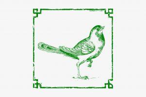 پرنده مینیاتوری